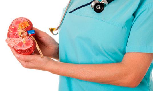 Cuidando los riñones