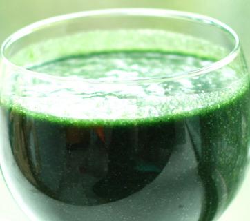 Spirulina como complemento dietario