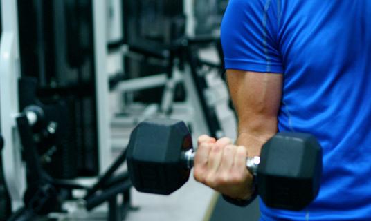 Factores para lograr el aumento muscular