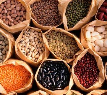 Las legumbres en la baja de peso