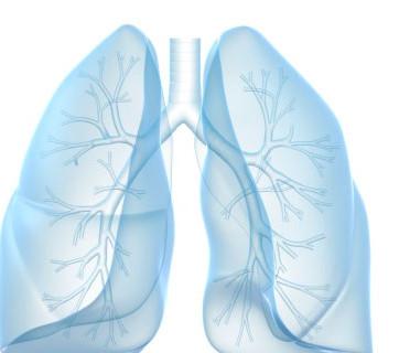 ¿Problemas de pulmón? ¿Asma?