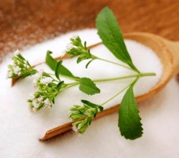 El Secreto de la Stevia